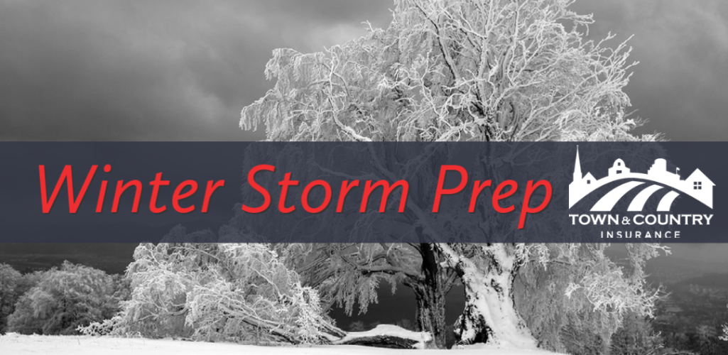 Winter Storm Prep