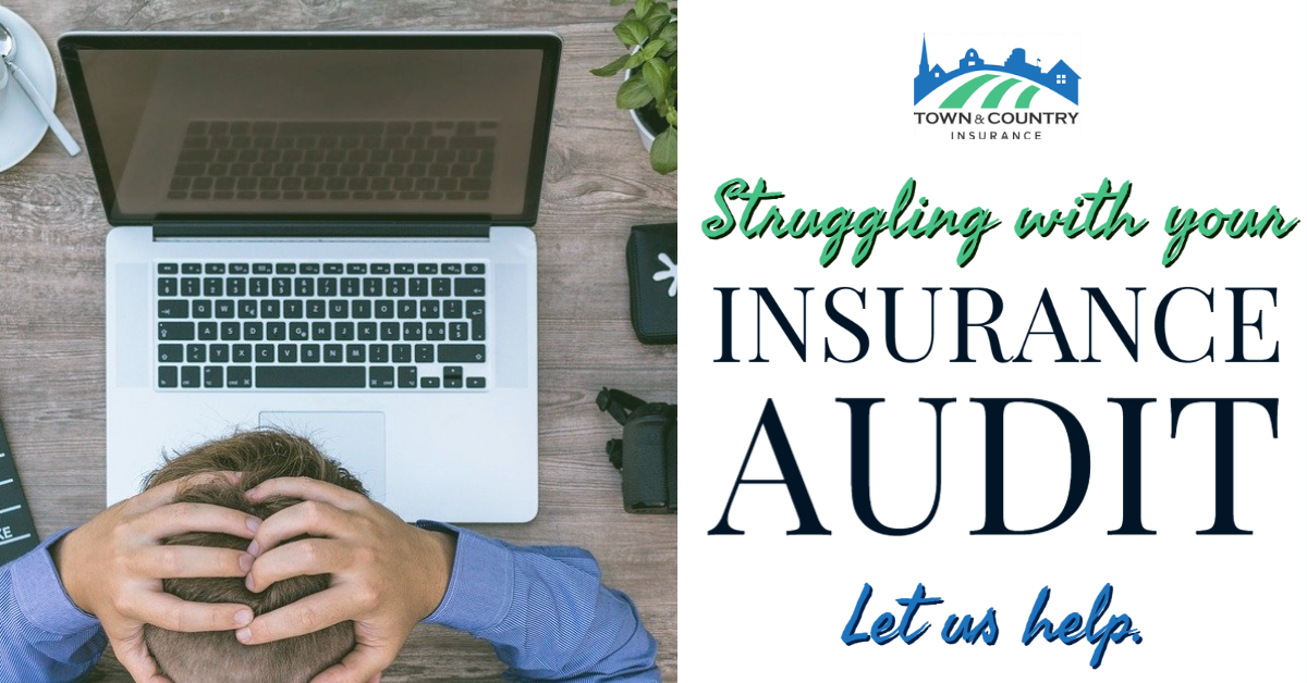 2020-02 - Insurance Audit Made Simple LI Blog